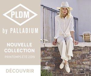 PLDM by Palladium