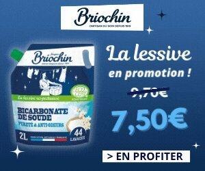 Le Briochin